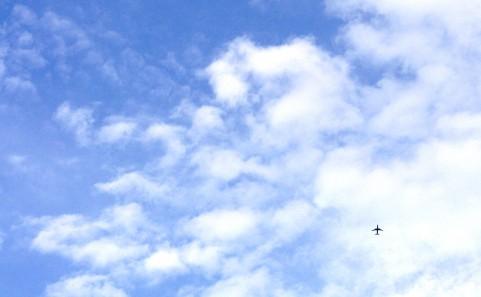 夏空に映る飛行機の機影